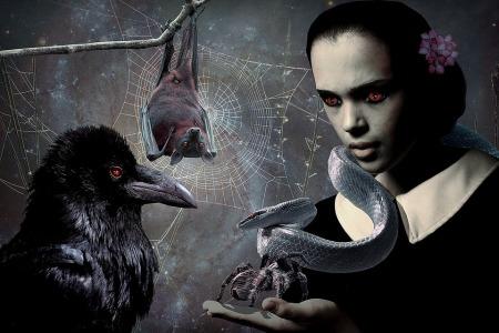 gothic-2487365_960_720